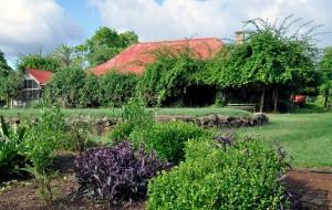 Hovedbølet på Gracemere slik det ser ut i 2011 med en frodig hage som har krøpet seg tett innpå verandaene.