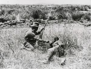En Anzac-soldat byr frem en kopp med vann til en skadd tyrker. 10 000 personer ble såret eller skadd i løpet av de første 48 timene av felttoget i Gallipoli. Foto: Argus Newspaper Collection of Photographs, State Library of Victoria.